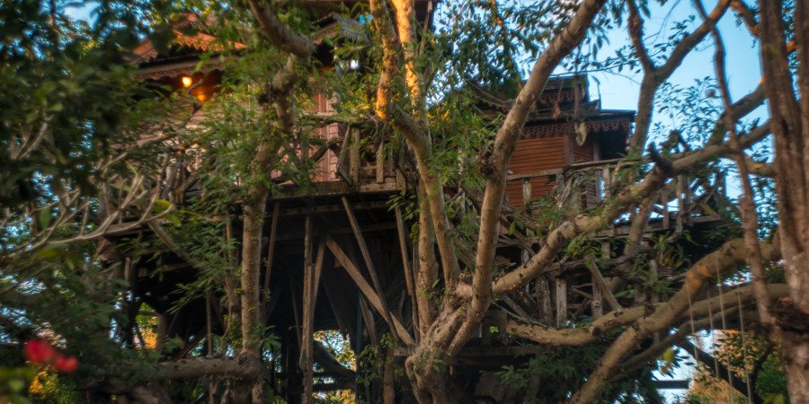 Magic treehouse